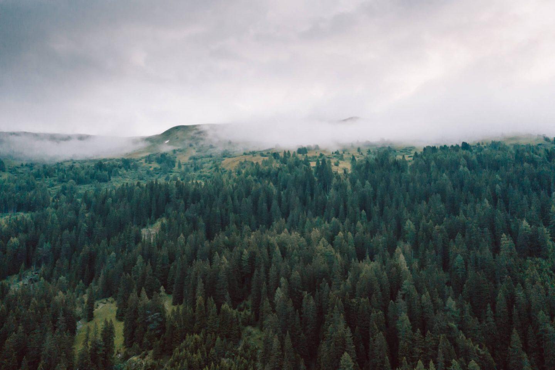 Wanderung zum Obernberger See im Wipptal; Bergsee im Wipptal;