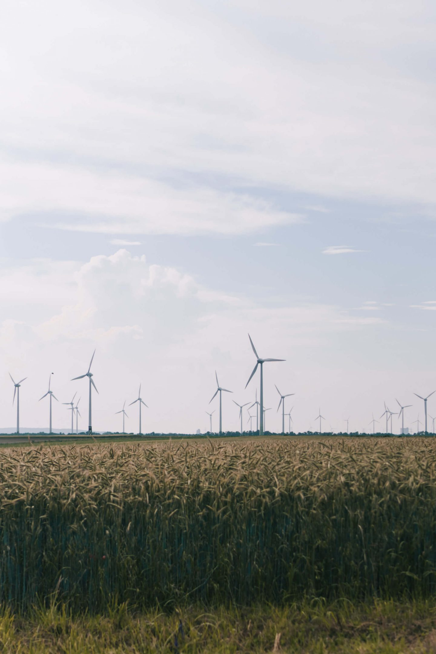 Windpark im Burgenland